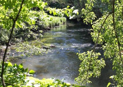 Pollution Prevention in Small Water Bodies in Kaliningrad Region