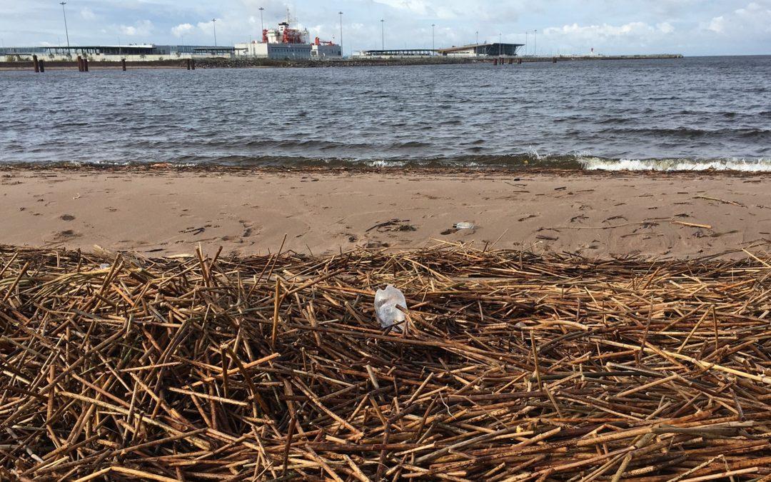 More Baltic Less Plastic