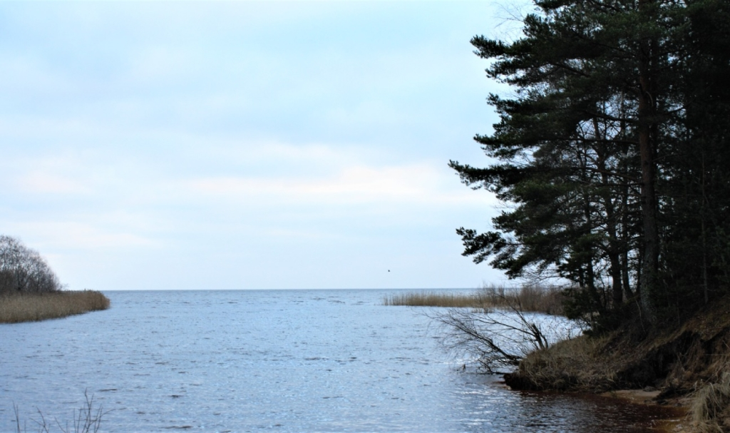 Lake Peipus, that is partly situated in Estonia and partly in Russia.